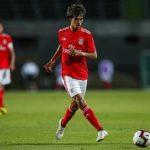 """Siapa Joao Felix, Pemain yang Disebut """"New Ronaldo""""?"""